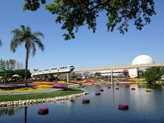 Flower Power - Floating Gardens at Epcot